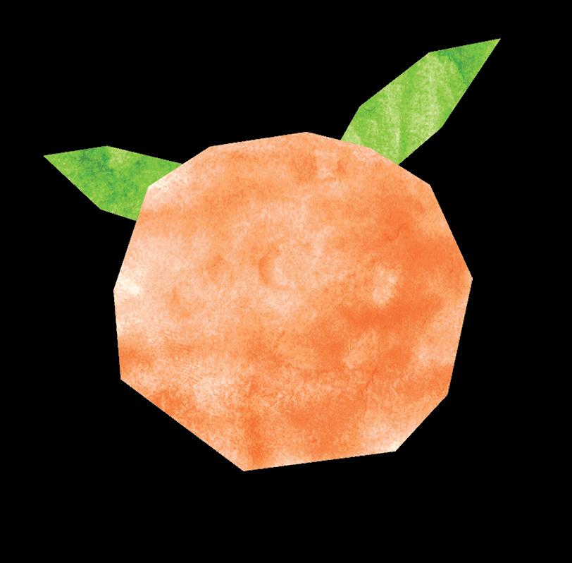 immagine arancia