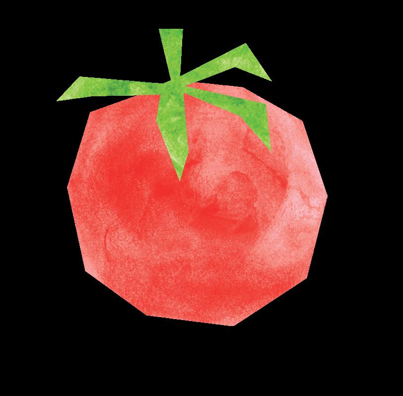 immagine pomodoro